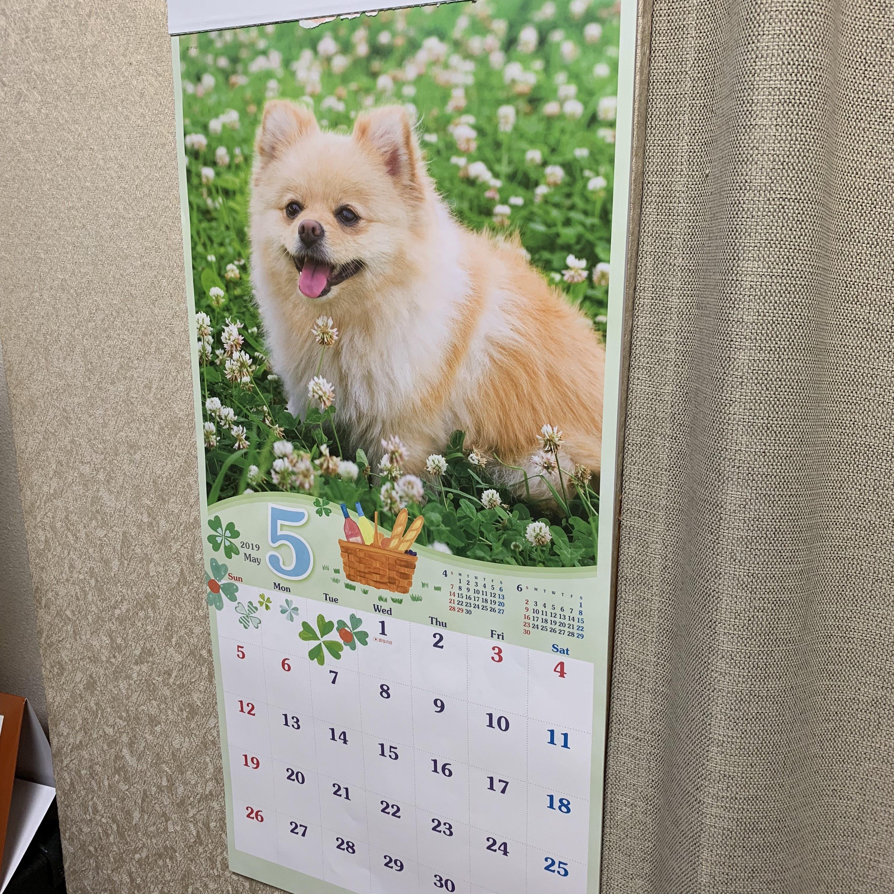 5月のカレンダー!!